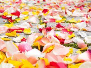 Wedding plannings Barcelona - Proymer